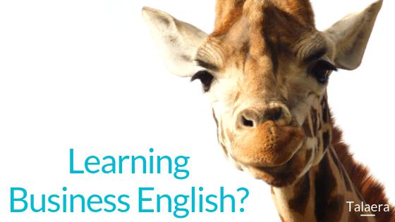 Business English (6)