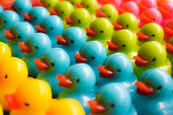 Business Idiom - Ducks in a row
