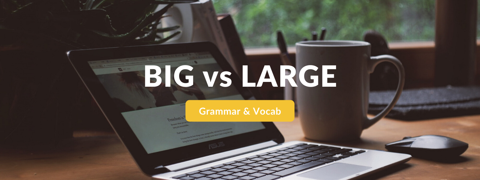 BIG vs LARGE - English grammar tips